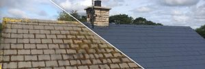 Roof Coatings Near Pitcairn Green