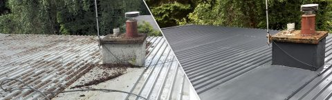 Roof Moss Removal in Gorebridge
