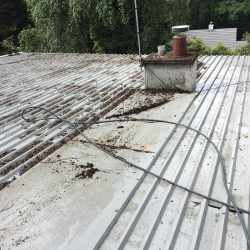 Fleetwood Roof Moss Removal