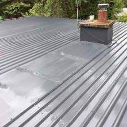 Roof Cleaning Companies Alloa