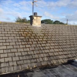 Roof Moss Removal Barrhead