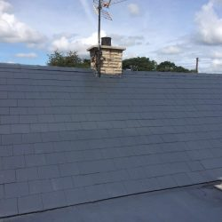 Roof Moss Removal in Carsphairn