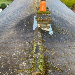 Local Roof Cleaning Gorebridge